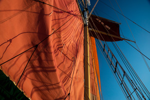 Day Sail on the Jolly Rover